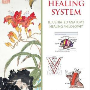 Tam Healing System - Illustrated Anatomy (Lucier)